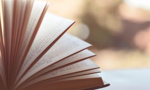 economics publications by tutor anthony fok jc econs